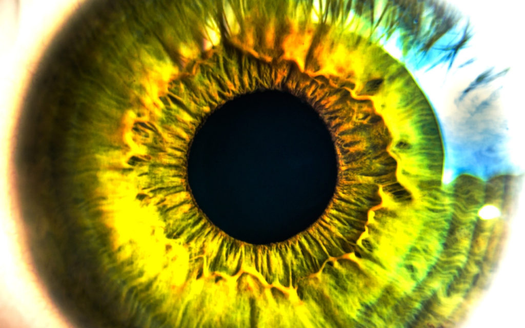 nutrition and vision eye